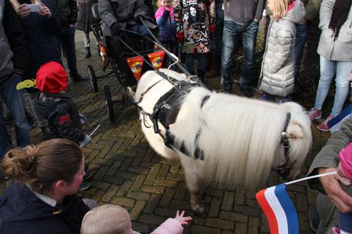 Sinterklaas paardje